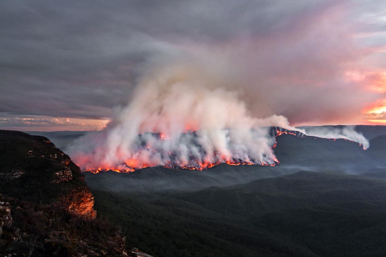 wildfires impact